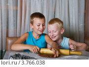 Купить «Два мальчика пекут печенье», фото № 3766038, снято 13 августа 2012 г. (c) Кузнецова Юлия (aka Syaochka) / Фотобанк Лори