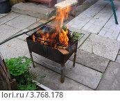 Купить «Дачный быт - сжигание мусора на мангале», эксклюзивное фото № 3768178, снято 2 июля 2012 г. (c) lana1501 / Фотобанк Лори