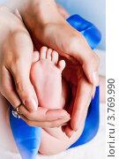 Купить «Ножка новорожденного в маминых руках», фото № 3769990, снято 20 августа 2012 г. (c) Ольга Денисова / Фотобанк Лори