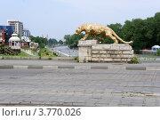 Купить «Золотой барс на фоне Владикавказа», фото № 3770026, снято 22 августа 2011 г. (c) Бирюкова Татьяна / Фотобанк Лори