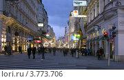 Купить «Туристы на Картнер штрассе вечером, таймлапс», видеоролик № 3773706, снято 3 марта 2012 г. (c) Losevsky Pavel / Фотобанк Лори
