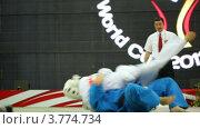 Купить «Судья разнимает двух спортсменов на Кубке мира по КУДО», видеоролик № 3774734, снято 9 декабря 2011 г. (c) Losevsky Pavel / Фотобанк Лори
