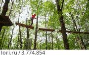Купить «Девочка идет по деревянному мостику в лесу, вид снизу», видеоролик № 3774854, снято 5 декабря 2011 г. (c) Losevsky Pavel / Фотобанк Лори