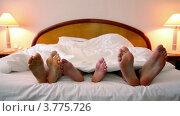 Купить «Мама, папа и сын спят под одеялом, высунув босые ноги из-под одеяла», видеоролик № 3775726, снято 12 марта 2012 г. (c) Losevsky Pavel / Фотобанк Лори