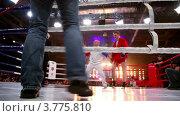 Купить «Объявление победителя на ринге.Московская битва 3», видеоролик № 3775810, снято 9 января 2012 г. (c) Losevsky Pavel / Фотобанк Лори