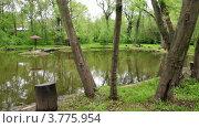 Купить «Стол и скамейки на берегу пруда в летнем парке», видеоролик № 3775954, снято 23 февраля 2012 г. (c) Losevsky Pavel / Фотобанк Лори