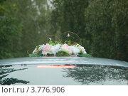Свадебные колокольчики на крыше автомобиля. Стоковое фото, фотограф Александр Манипов / Фотобанк Лори