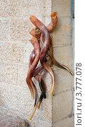 Связка сувенирных рогов висит на углу дома. Стоковое фото, фотограф Shlomo Polonsky / Фотобанк Лори