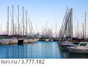 Купить «Роскошные яхты в порту Сен Пьер, Канны, Лазурный берег франции», фото № 3777182, снято 13 июня 2010 г. (c) ElenArt / Фотобанк Лори