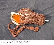 Купить «Японский военный горн-раковина (хорагай) в оплетке на черном фоне», фото № 3778734, снято 25 августа 2012 г. (c) Иван Марчук / Фотобанк Лори