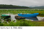 Лодки на озере с лотосами. Стоковое фото, фотограф Наталья Силинская / Фотобанк Лори