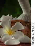 Предметы для спа-процедур и массажа. Стоковое фото, фотограф Дмитрий Эрслер / Фотобанк Лори