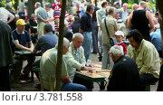 Купить «Много людей играют в настольные игры в парке Сокольники, в летний день», видеоролик № 3781558, снято 1 апреля 2012 г. (c) Losevsky Pavel / Фотобанк Лори