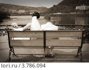 Невеста и жених сидят на лавочке. Стоковое фото, фотограф Вячеслав Зяблов / Фотобанк Лори