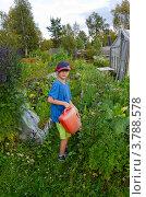 Семилетний мальчик поливает огород. Стоковое фото, фотограф Надежда Щур / Фотобанк Лори