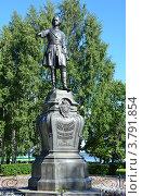 Купить «Памятник Петру первому в Петрозаводске», фото № 3791854, снято 26 августа 2012 г. (c) Овчинникова Ирина / Фотобанк Лори