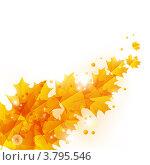 Купить «Осенние листья», иллюстрация № 3795546 (c) Евгения Малахова / Фотобанк Лори