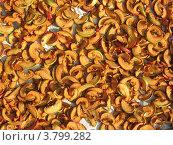 Сушеные яблоки. Стоковое фото, фотограф Михаил Дозоров / Фотобанк Лори