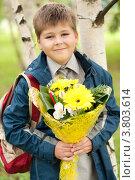 Купить «Школьник с букетом в парке», фото № 3803614, снято 31 августа 2012 г. (c) Володина Ольга / Фотобанк Лори