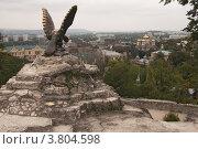 Купить «Символ Пятигорска - бронзовый орел, победитель болезней», эксклюзивное фото № 3804598, снято 1 сентября 2012 г. (c) Андрей Ижаковский / Фотобанк Лори