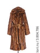 Купить «Женская норковая шуба с капюшоном на вешалке», фото № 3804786, снято 20 июля 2012 г. (c) Tatjana Romanova / Фотобанк Лори