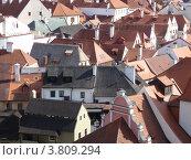 Черепичные крыши европейского города (2011 год). Стоковое фото, фотограф Николаева Наталья / Фотобанк Лори