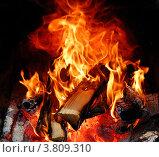 Горящие дрова в печи. Стоковое фото, фотограф Вакулин Сергей / Фотобанк Лори