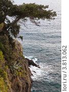 Купить «Скалистый берег моря», фото № 3813062, снято 22 апреля 2010 г. (c) Виктория Катьянова / Фотобанк Лори