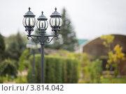 Купить «Фонарь во дворе», фото № 3814042, снято 30 августа 2012 г. (c) Галаганов Дмитрий Александрович / Фотобанк Лори