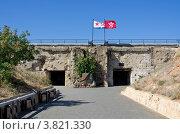 Купить «Главный вход в казематы 35-й Бронебашенной береговой батареи», эксклюзивное фото № 3821330, снято 23 августа 2012 г. (c) Аркадий Захаров / Фотобанк Лори
