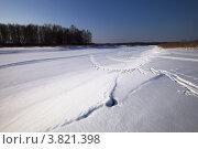 Купить «Зимние просторы», фото № 3821398, снято 9 марта 2012 г. (c) Ольга Денисова / Фотобанк Лори