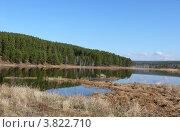 Лесное озеро. Стоковое фото, фотограф Алина Сысоева / Фотобанк Лори