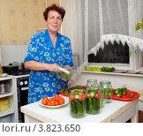 Купить «Женщина консервирует овощи», эксклюзивное фото № 3823650, снято 13 августа 2012 г. (c) Вячеслав Палес / Фотобанк Лори