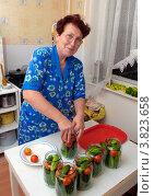 Купить «Женщина консервирует овощи», эксклюзивное фото № 3823658, снято 13 августа 2012 г. (c) Вячеслав Палес / Фотобанк Лори