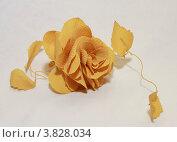 Декоративный цветок. Стоковое фото, фотограф Марина Алешина / Фотобанк Лори