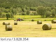 Фермер, собирающий тюки с сеном (2012 год). Стоковое фото, фотограф Dmitry Burlakov / Фотобанк Лори