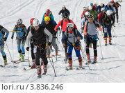Купить «Ски-альпинизм. Камчатка», фото № 3836246, снято 21 апреля 2012 г. (c) А. А. Пирагис / Фотобанк Лори