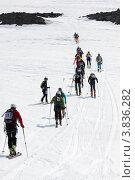 Купить «Ски-альпинизм. Камчатка», фото № 3836282, снято 21 апреля 2012 г. (c) А. А. Пирагис / Фотобанк Лори