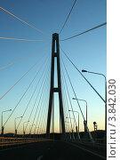 Купить «Владивосток. Вантовый мост на остров Русский вечером», эксклюзивное фото № 3842030, снято 29 августа 2012 г. (c) Алексей Гусев / Фотобанк Лори
