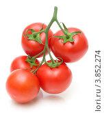 Купить «Свежие красные томаты», фото № 3852274, снято 21 мая 2012 г. (c) Ласточкин Евгений / Фотобанк Лори