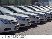 Ряд новых автомобилей (2012 год). Редакционное фото, фотограф Артём Вакарин / Фотобанк Лори