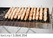 Барбекю: турецкий шашлык на мангале. Стоковое фото, фотограф Shlomo Polonsky / Фотобанк Лори