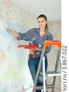 Купить «Девушка красит стены с кистью. Ремонт», фото № 3867022, снято 22 сентября 2012 г. (c) Яков Филимонов / Фотобанк Лори