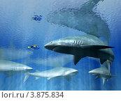 Купить «Акулы и маленькая рыбка», иллюстрация № 3875834 (c) Голкин Андрей Александрович / Фотобанк Лори