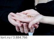 Обручальные кольца и руки новобрачных. Стоковое фото, фотограф Sasha Snegireva / Фотобанк Лори