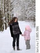 Купить «Молодая мама с дочерью гуляют в зимнем парке», фото № 3885986, снято 24 декабря 2011 г. (c) Игорь Долгов / Фотобанк Лори