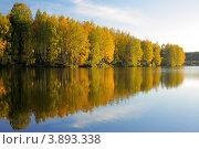Купить «Осень. Деревья отражаются в воде», фото № 3893338, снято 7 октября 2010 г. (c) Сычёва Виктория / Фотобанк Лори