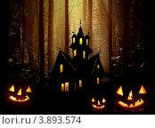 Купить «Хеллоуин, тыквы и замок ведьмы в лесу», фото № 3893574, снято 23 января 2018 г. (c) ElenArt / Фотобанк Лори