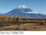 Купить «Корякский вулкан (Корякская сопка) на Камчатке», фото № 3896210, снято 30 сентября 2012 г. (c) А. А. Пирагис / Фотобанк Лори