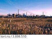 Купить «Металлургический комбинат», фото № 3898510, снято 26 сентября 2012 г. (c) Валерий Тырин / Фотобанк Лори